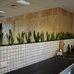 Location de plantes en entreprise - installed_troughs
