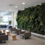 Location de plantes en entreprise - office-green-wall