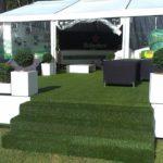 Plantes pour événementiel - hospitality tent