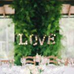 Plantes pour événementiel - love wall