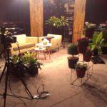 Plantes pour événementiel - studioset