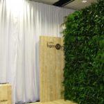 Plantes pour événementiel - temp-plant-wall