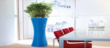 Les bienfaits de la location de plantes vertes en entreprise